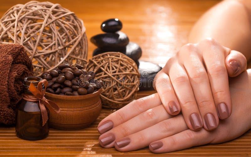 Belle manucure brune sur un fond en bambou photos libres de droits