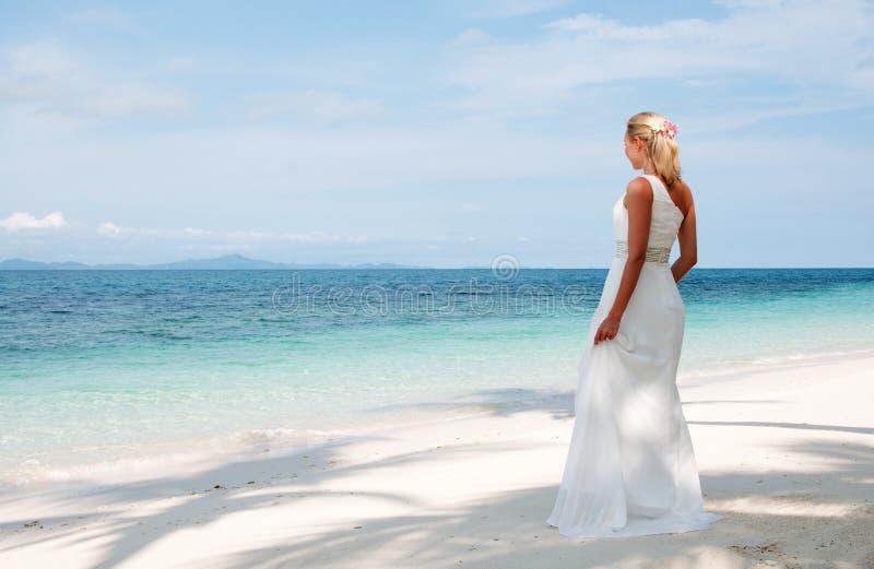Belle mariée sur le fond tropical de côté de mer photographie stock libre de droits