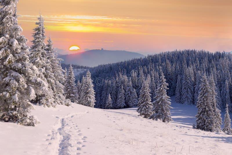 Belle montagne del sunrisein di inverno. fotografia stock