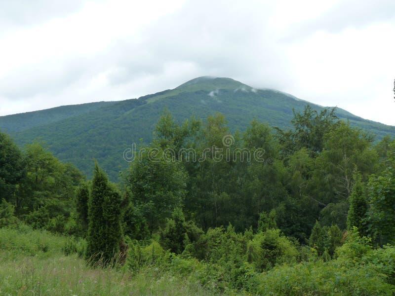 Belle montagne nebbiose Paesaggio dopo la pioggia immagini stock libere da diritti