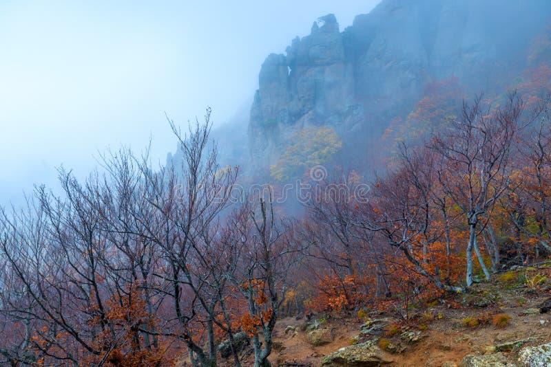 Belle montagne, vista degli alberi nudi e rocce, paesaggio di autunno fotografie stock libere da diritti