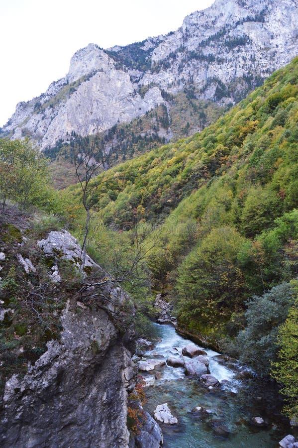 Belle natura & acqua fotografia stock libera da diritti