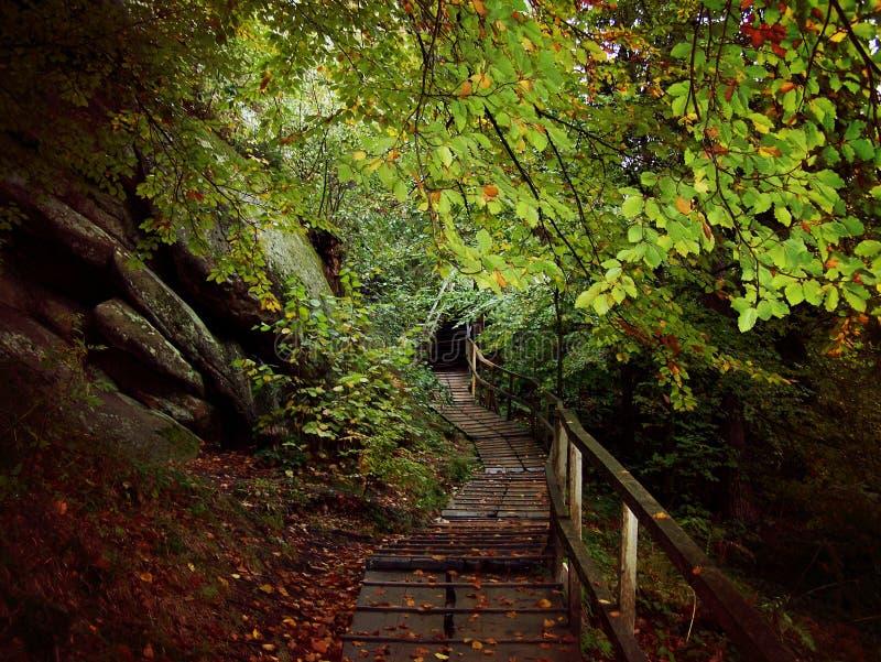 Belle nature photos stock