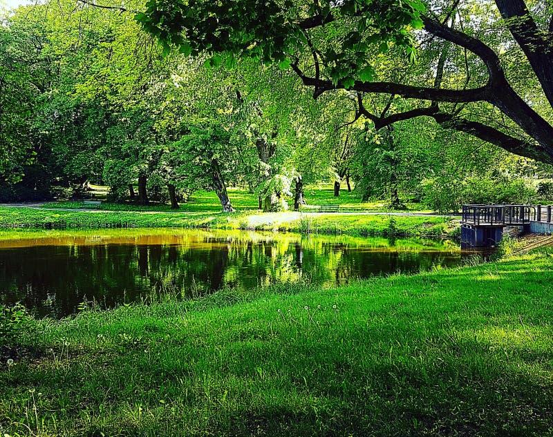 Belle nature en Pologne photographie stock