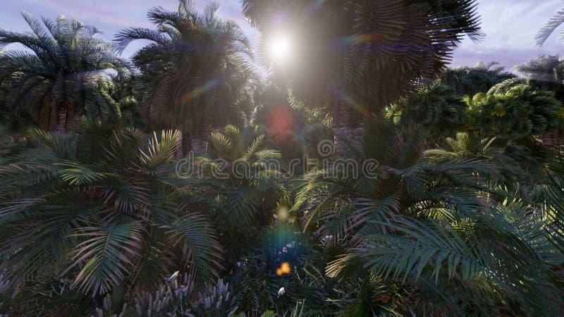 Belle nature, palmiers, insectes, papillons et oiseaux, herbe verte et lever de soleil brillant rendu 3d illustration stock