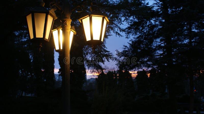 Belle nuit images libres de droits