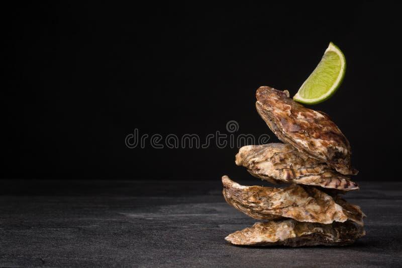Belle ostriche chiuse su un fondo nero Molluschi appetitosi del mare con calce succosa Ingredienti marini costosi immagine stock libera da diritti