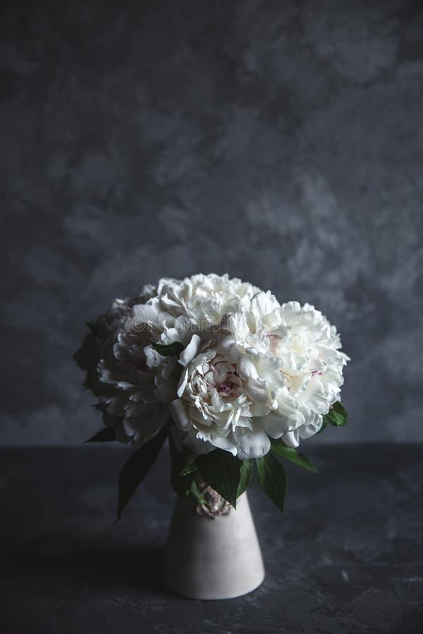 Belle peonie su fondo concreto grigio Nozze, compleanno, giorno del ` s del biglietto di S. Valentino, regalo o concetto di giorn fotografia stock