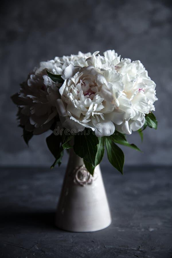 Belle peonie su fondo concreto grigio Nozze, compleanno, San Valentino, il giorno delle donne fotografia stock
