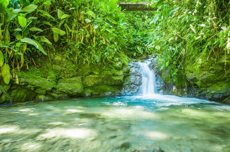 Belle petite cascade située à l'intérieur d'une forêt verte avec des pierres en rivière chez Mindo images libres de droits