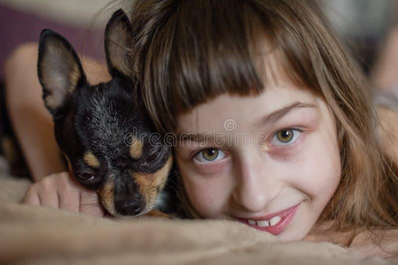 Belle petite fille aux cheveux longs avec un chiwawa de chien photos libres de droits