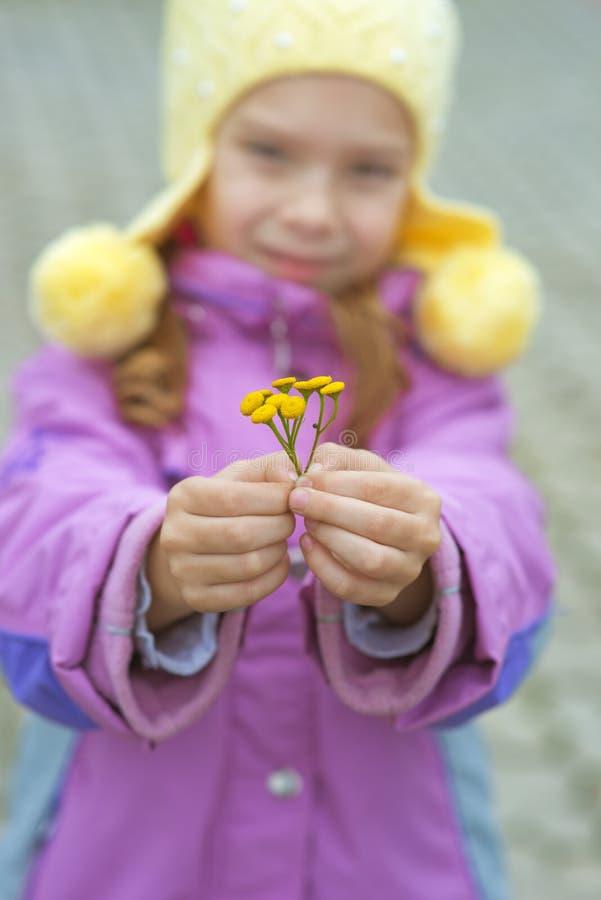 Belle petite fille dans le manteau rose images stock