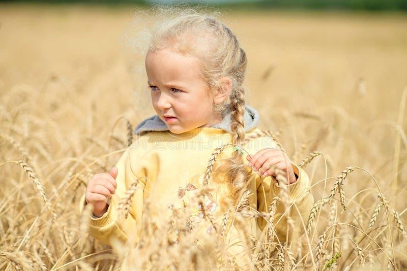 Belle petite fille marchant dans le domaine du blé image libre de droits
