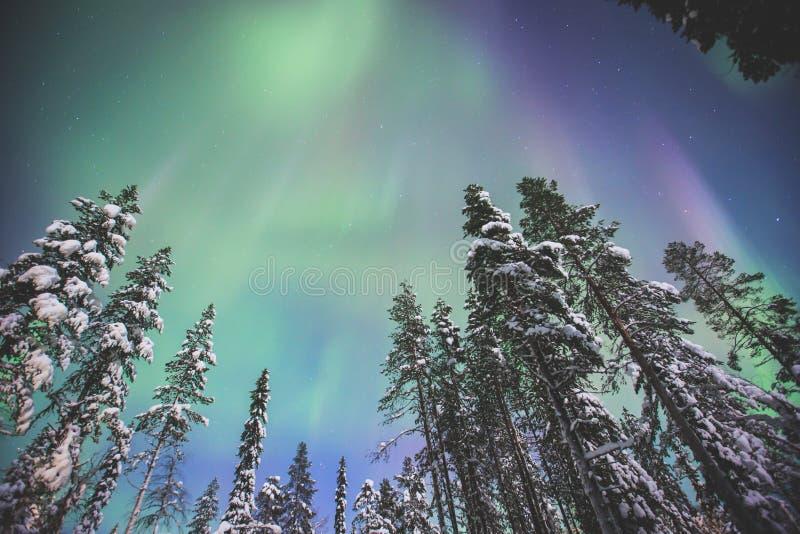 Belle photo d'Aurora Borealis vibrante verte multicolore massive, lumières du nord images stock