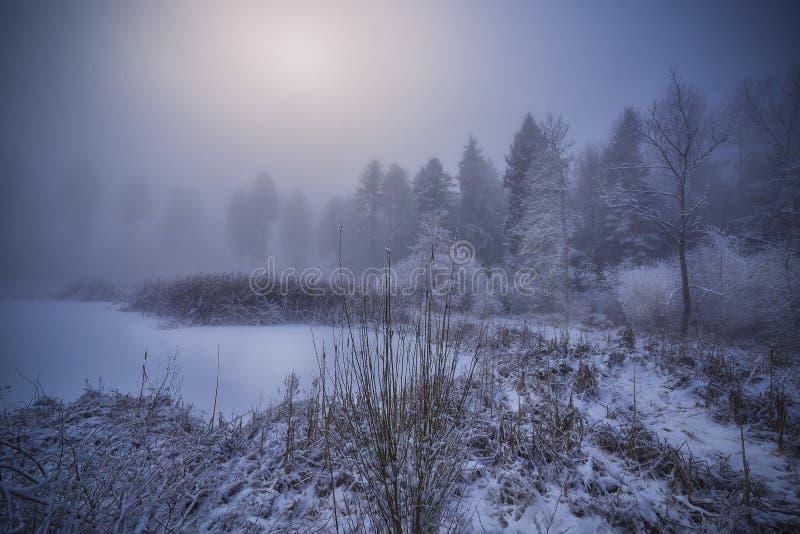 Belle photo d'un étang gelé près de la côte enneigée avec des arbres et un fond brouillard photographie stock