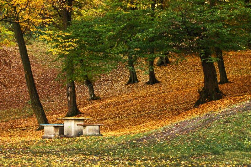 Belle photographie d'automne photographie stock