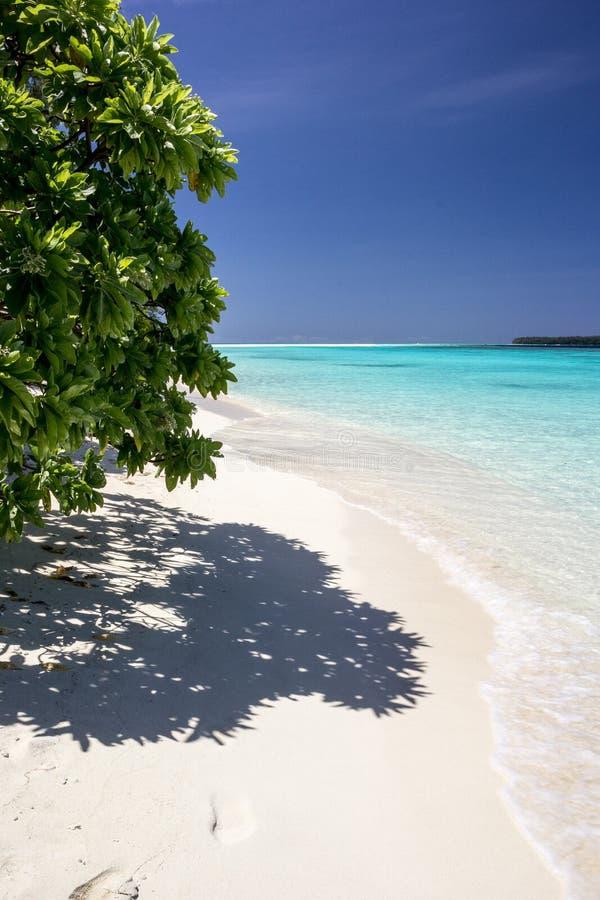 Belle plage avec de l'eau transparent turquoise en île de conflit, Papouasie-Nouvelle-Guinée photos stock