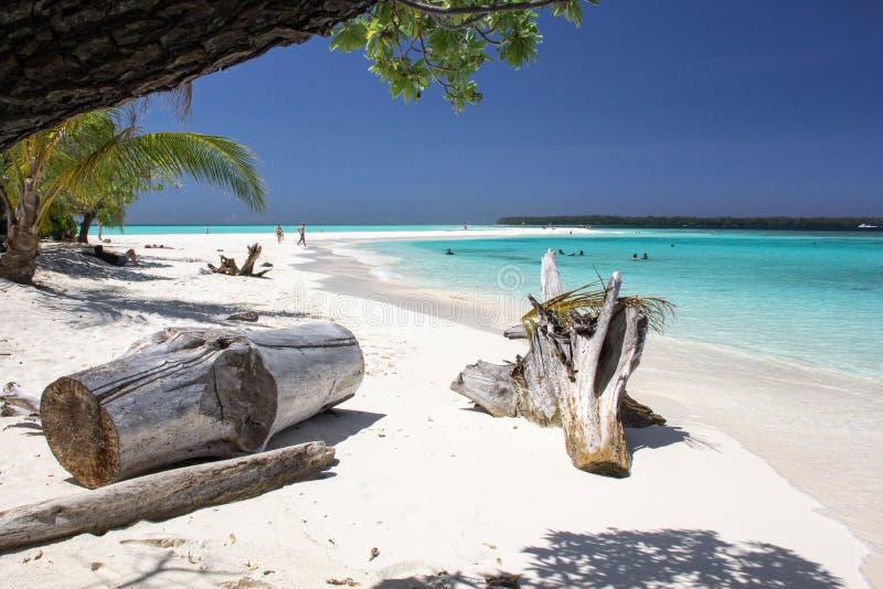 Belle plage avec de l'eau transparent turquoise en île de conflit, Papouasie-Nouvelle-Guinée photographie stock
