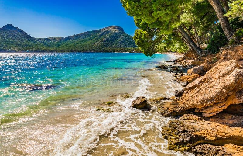 Belle plage de Formentor sur Majorca, Îles Baléares photo stock