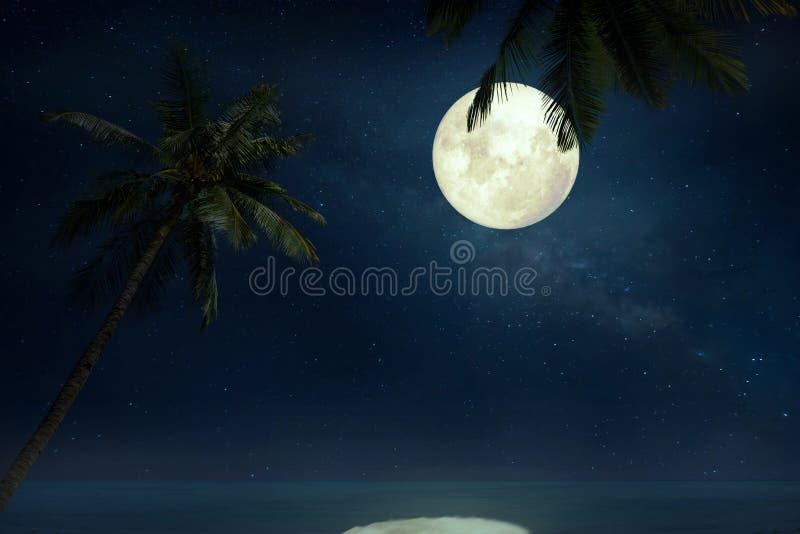 Belle plage tropicale avec l'étoile de manière laiteuse en cieux nocturnes, pleine lune image stock