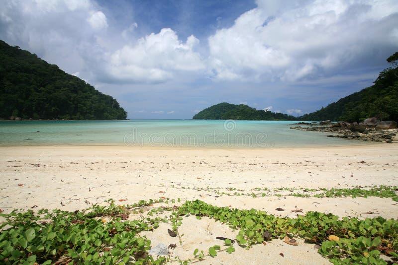 Belle plage tropicale contre le ciel bleu image stock