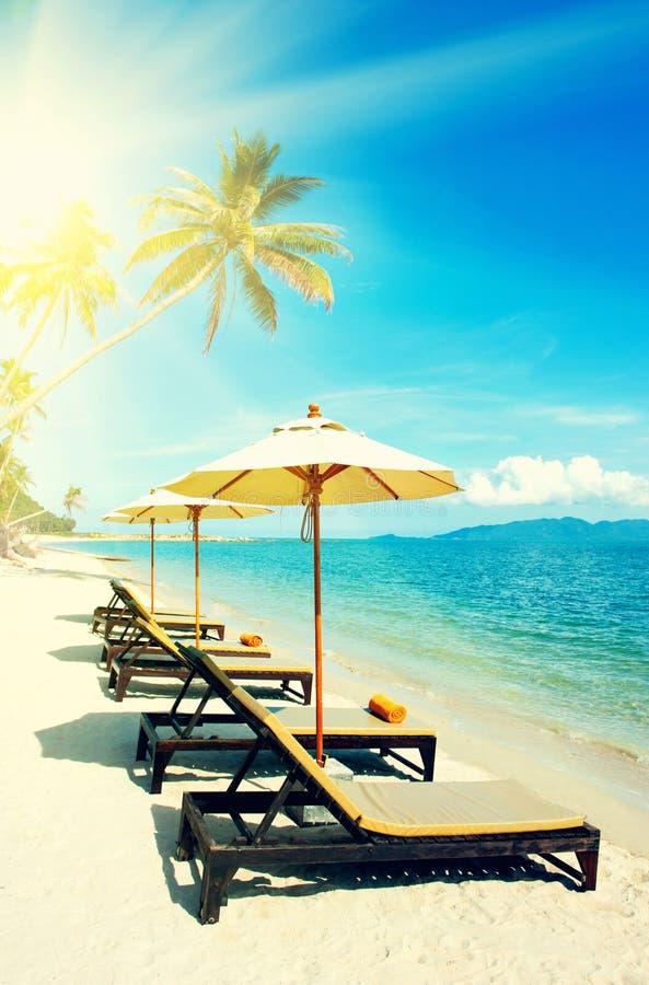 Belle plage Vue de plage tropicale gentille avec des paumes autour Concept de vacances et de vacances Plage tropicale Beau tropic image stock