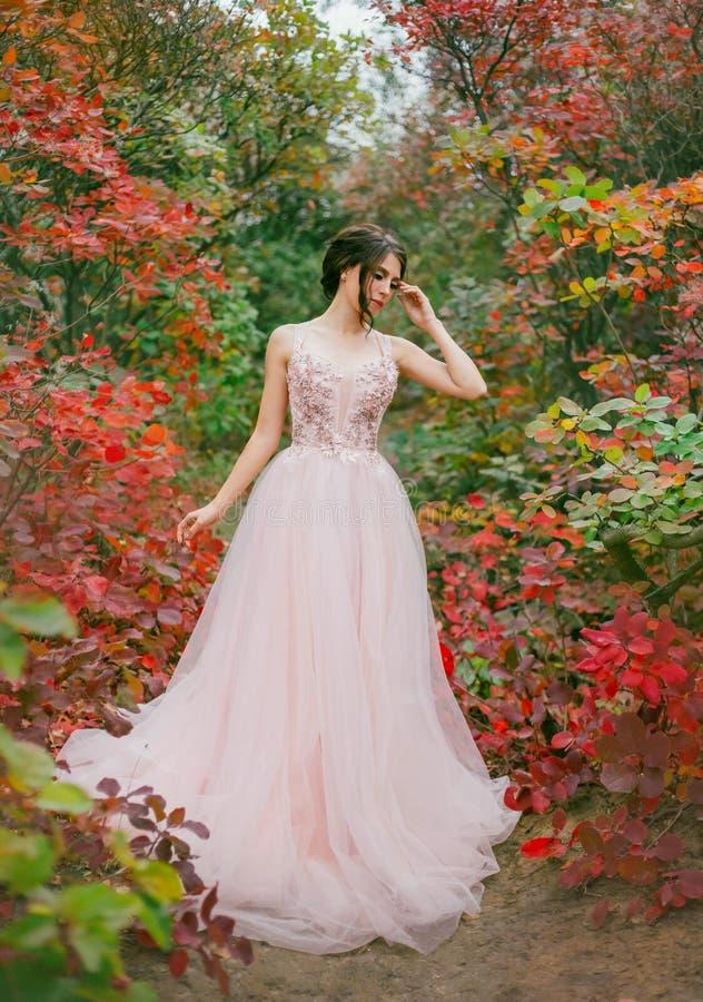 Belle princesse mince avec les cheveux foncés et les cheveux ordonnés habillés dans une position magnifique de robe de longue pêc photo stock
