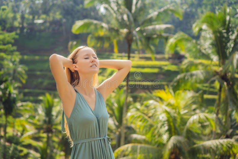 Belle promenade de jeune femme au flanc de coteau asiatique typique avec du riz cultivant, terrasses de gisement de riz de cascad image libre de droits