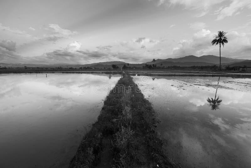 Belle réflexion des nuages dans une zone rurale en noir et blanc photos stock