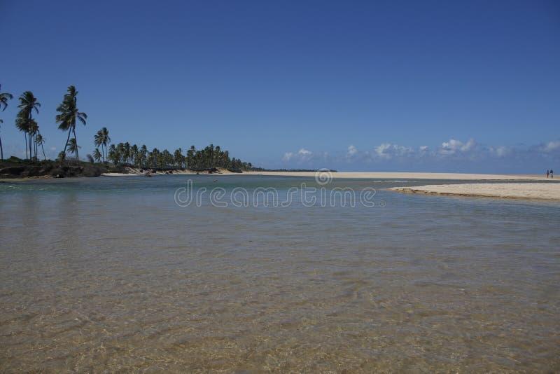 Belle réunion de la rivière et de la plage photo libre de droits