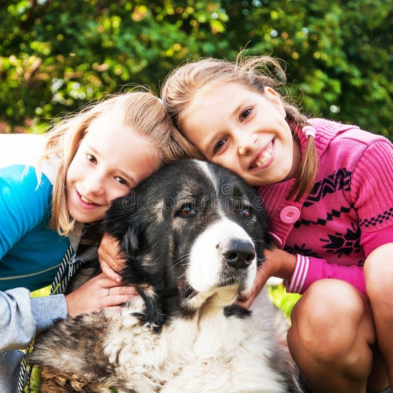Belle ragazze ed il suo cane immagine stock