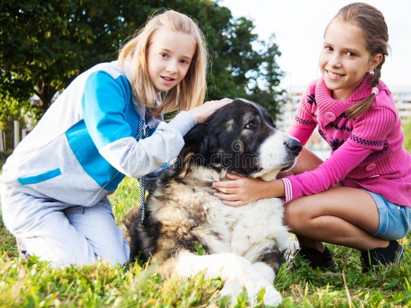 Belle ragazze ed il suo cane fotografie stock libere da diritti