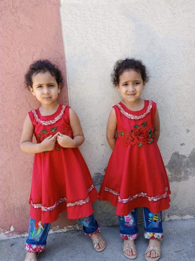 Belle ragazze gemellare fotografia stock libera da diritti