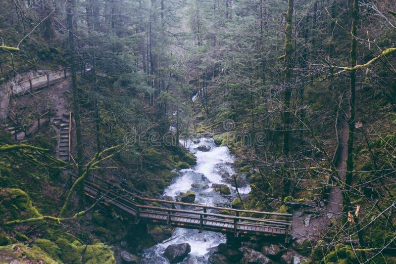 Belle rivière fonctionnant par une forêt avec un pont suspendu construit au-dessus de lui image stock