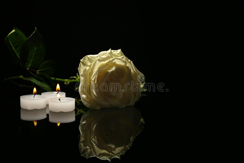 Belle rosa e candele di bianco fotografie stock libere da diritti
