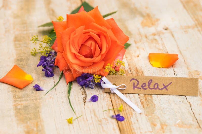 Belle rose de couleur orange avec la carte cadeaux, le bon ou le bon pour Relax photographie stock
