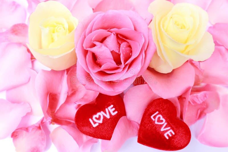 Belle rose et coeur roses et blancs pour le jour de valentine. Photo courante. image stock