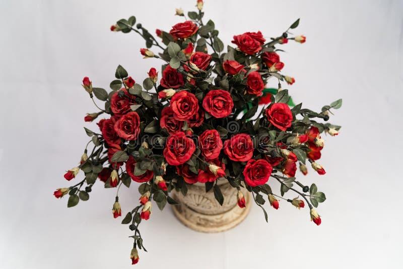 Belle rose rosse in un vaso ceramico fotografie stock