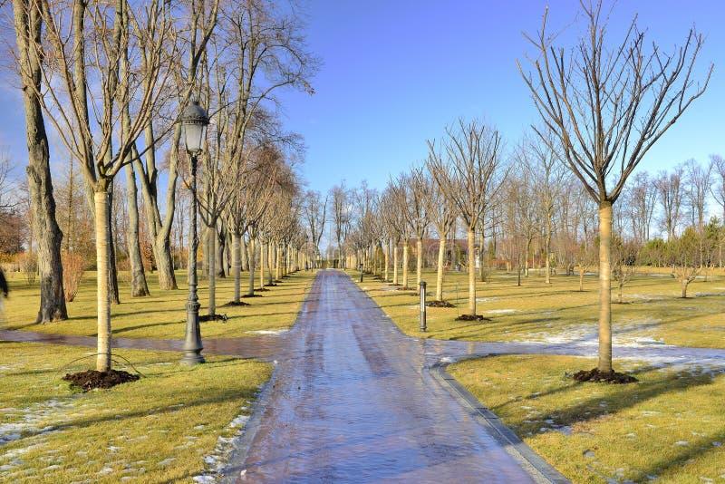 Belle route de l'hiver image stock