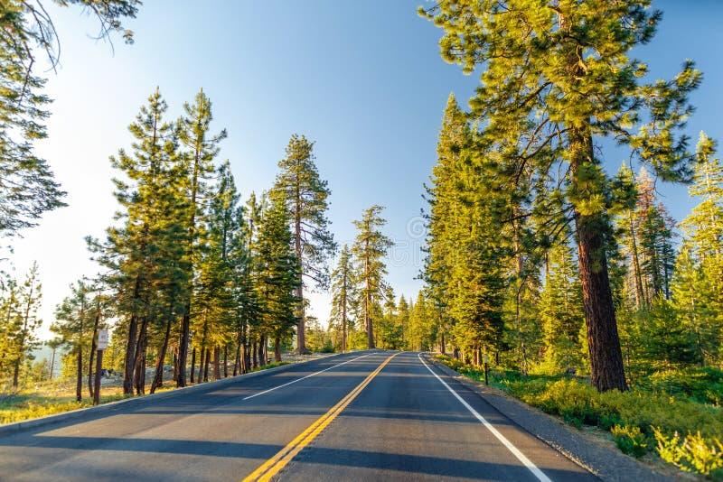 Belle route entre la forêt pendant le coucher du soleil au parc national la Californie de Yosemite images stock