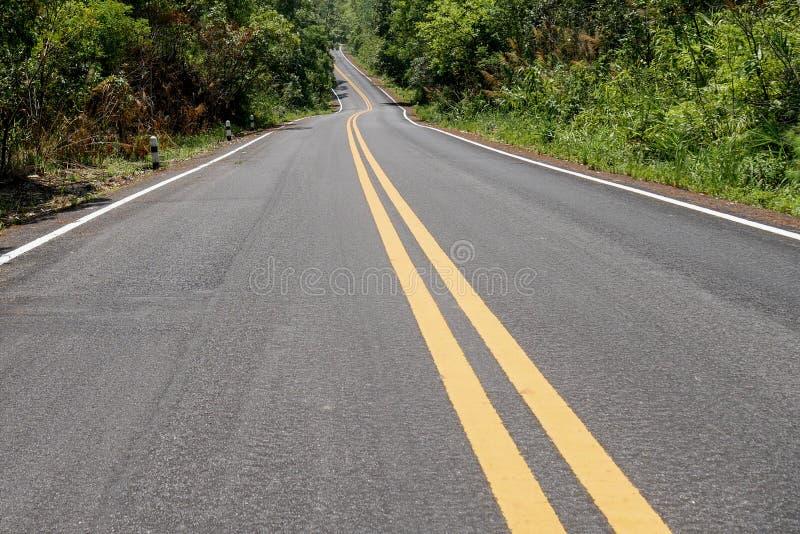 Belle route goudronnée avec le point de disparaition et la double ligne jaune photographie stock libre de droits