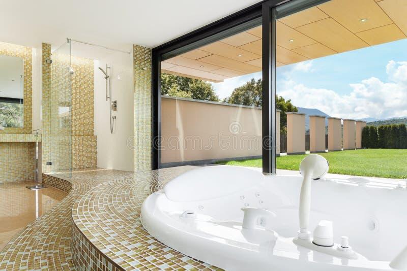 belle salle de bains avec le jacuzzi photo stock image du jacuzzi bathroom 42167408. Black Bedroom Furniture Sets. Home Design Ideas