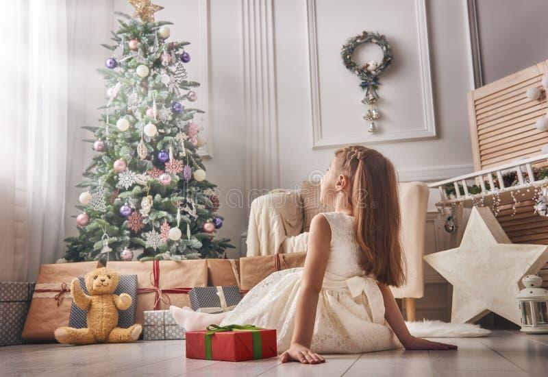 Belle Santa photo libre de droits
