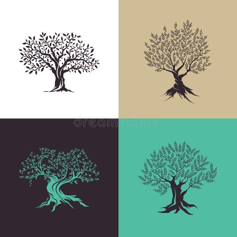 Belle silhouette magnifique d'olivier d'isolement sur le fond de couleur illustration libre de droits