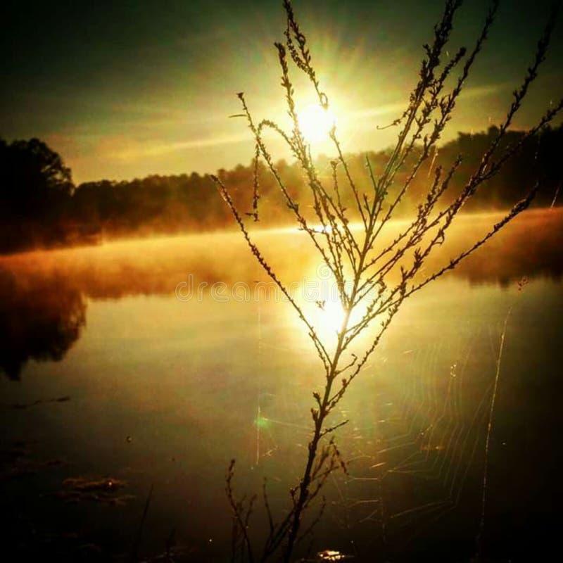 Belle solitude image stock