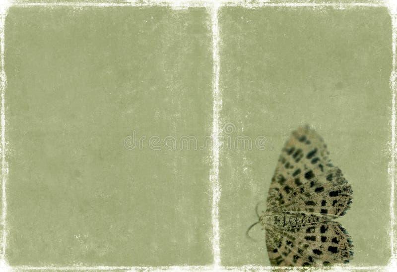 Belle texture de fond photo stock