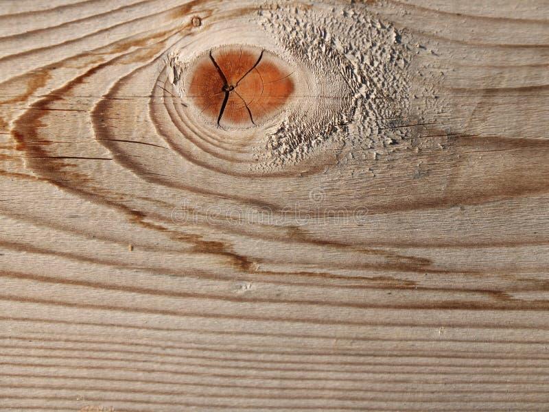 Belle texture de l'ancienne planche avec noeud photos libres de droits
