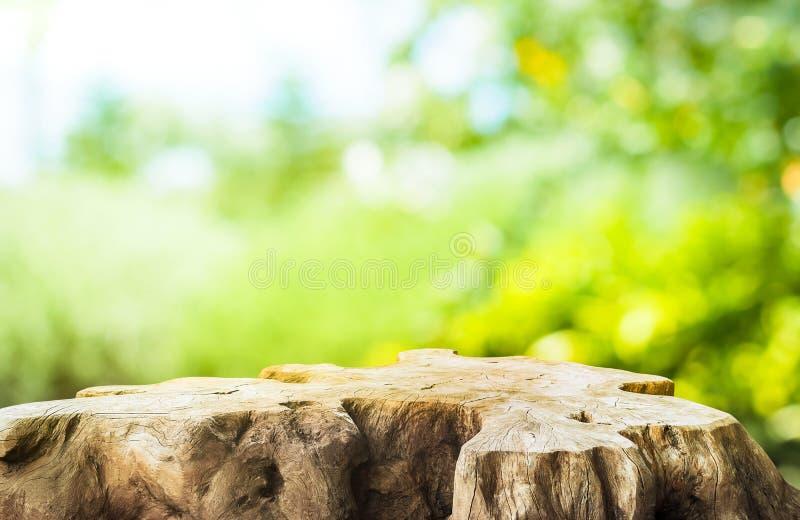 Belle texture de l'ancienne table de moelle d'arbre sur fond de ferme de jardin vert flou photo libre de droits