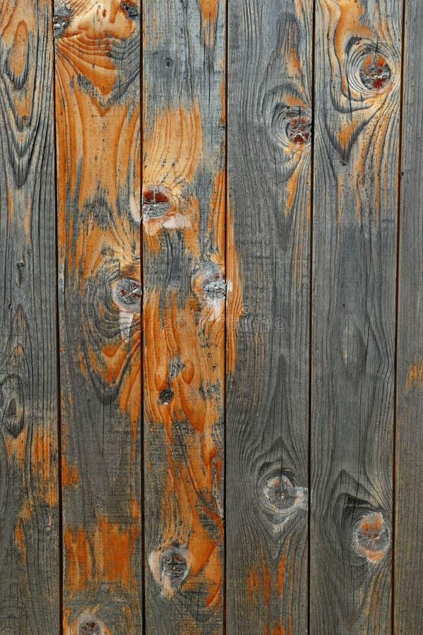 Belle texture en bois photos libres de droits