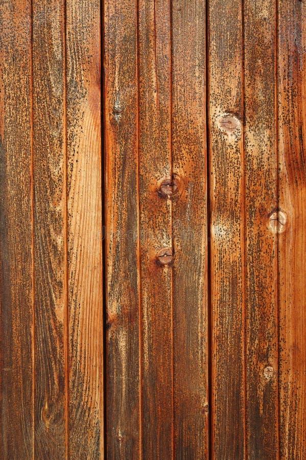 Belle texture en bois photographie stock